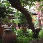 Jardines interiores en Girón