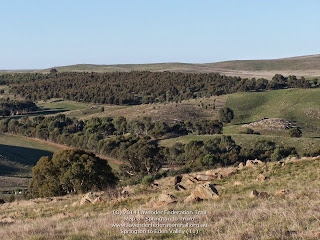 Springton to Eden Valley (11)