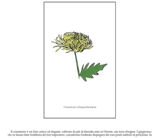 I messaggi segreti dei fiori di mandy kirby epub free ita - Il giardino dei fiori segreti ...