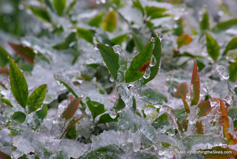 12-06-13 DFW Ice Storm - IMGP5455.JPG