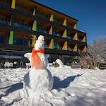 Sattlerwirt im Winter - Photo 47