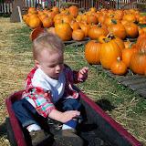 Pumpkin Patch - 114_6559.JPG