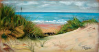 La Dune 50 x 30 Février 2004