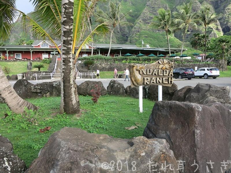 ハワイ旅行㉕ クアロアランチの予約方法 バギーと乗馬を同日にやりたいので個人で予約