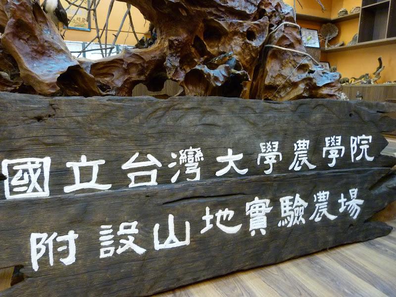 TAIWAN Dans la region de Wushe,au centre - P1140097.JPG