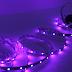 Đèn Led dây màu tím là gì