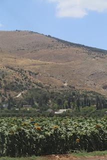 05/ Nous partons en direction de la Galilée et de Nazareth, en passant par la riche vallée du Jourdain.
