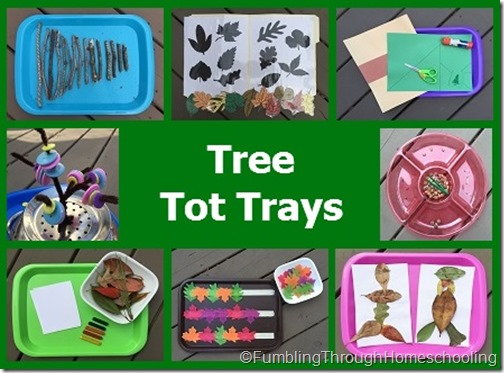 Tree Tot Trays