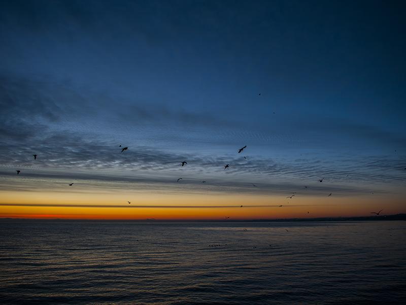 Last sunrise 2014 (4).png