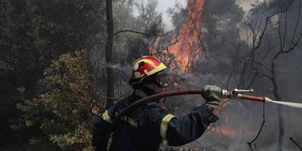 Φωτιά στη Βρύναινα Μαγνησίας - Επιχειρούν ισχυρές πυροσβεστικές δυνάμεις