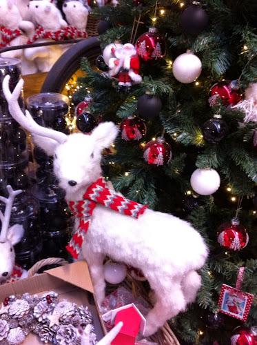 Noel floralux d'aides le