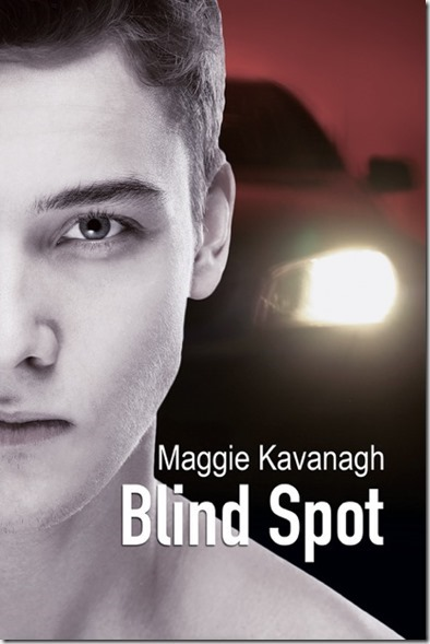 BlindSpotCover_MK_thumb1