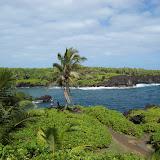 Hawaii Day 5 - 100_7451.JPG