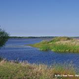 04-06-12 Myaka River State Park - IMGP9900.JPG