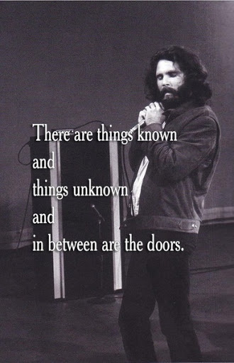 Quotes About Doors Cool Top 35 Famous Jim Morrison Quotes