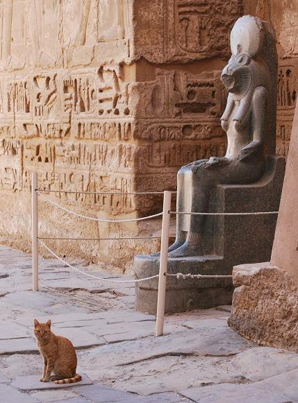 felines-ancient-and-modern-medinet-habu