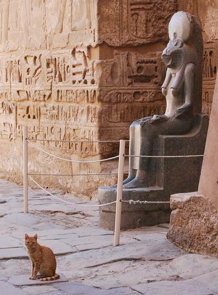 felines-ancient-and-modern-medinet-habu