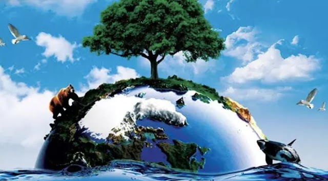 Bencana Bagi Manusia Berkah Bagi Bumi