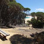 Seat at the top of Wallagoot Beach (104713)