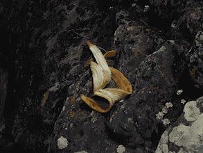 Photo: banana on the rocks