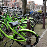 green bikes in amsterdam in Amsterdam, Noord Holland, Netherlands