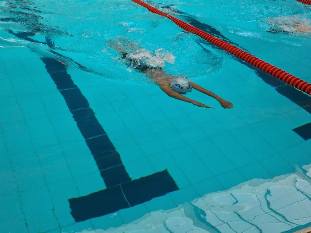 Interclub r gional benjamins libourne natation - Piscine municipale libourne ...