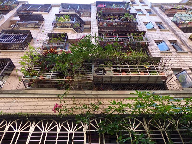 Taipei, Yilan, Datong, Luoding - P1020906.JPG
