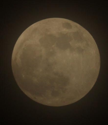 Super lune de sang, et si ce soir on regardait le ciel ? IMG_6832