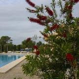 pool_60.jpg
