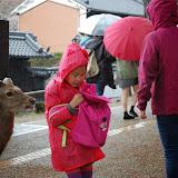 2014 Japan - Dag 8 - jordi-DSC_0438.JPG