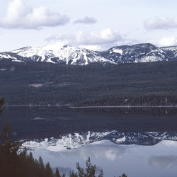Views of Whitefish Lake