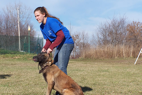 Tarheel Canine Facility Album - training_students3.jpg