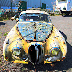 ONE CAREFUL OWNER by Stewart JOHN Lobb - Artistic Objects Antiques ( car, jaguar, lobb, stewart, jersey, island )