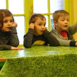 L1C kinderboerderij
