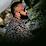 Deepak patange's profile photo
