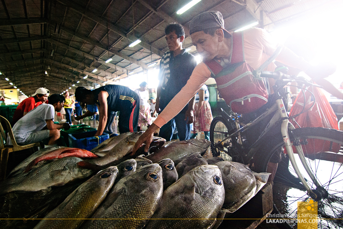 Resellers Buying at the Navotas Fish Port