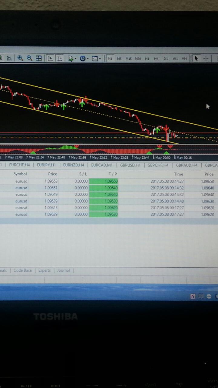 Trading forex tanpa rugi