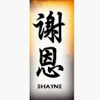 shayne - tattoo meanings