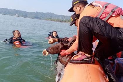 Selfie Berujung Maut! Pemuda Tewas Tercebur ke Laut bersama Motornya di Teluk Penyu Cilacap