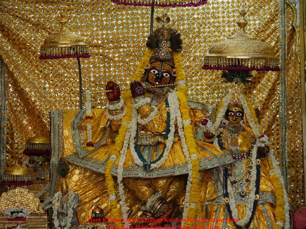 Radha Govind Devji Deity Darshan 2 April  2016  (12)
