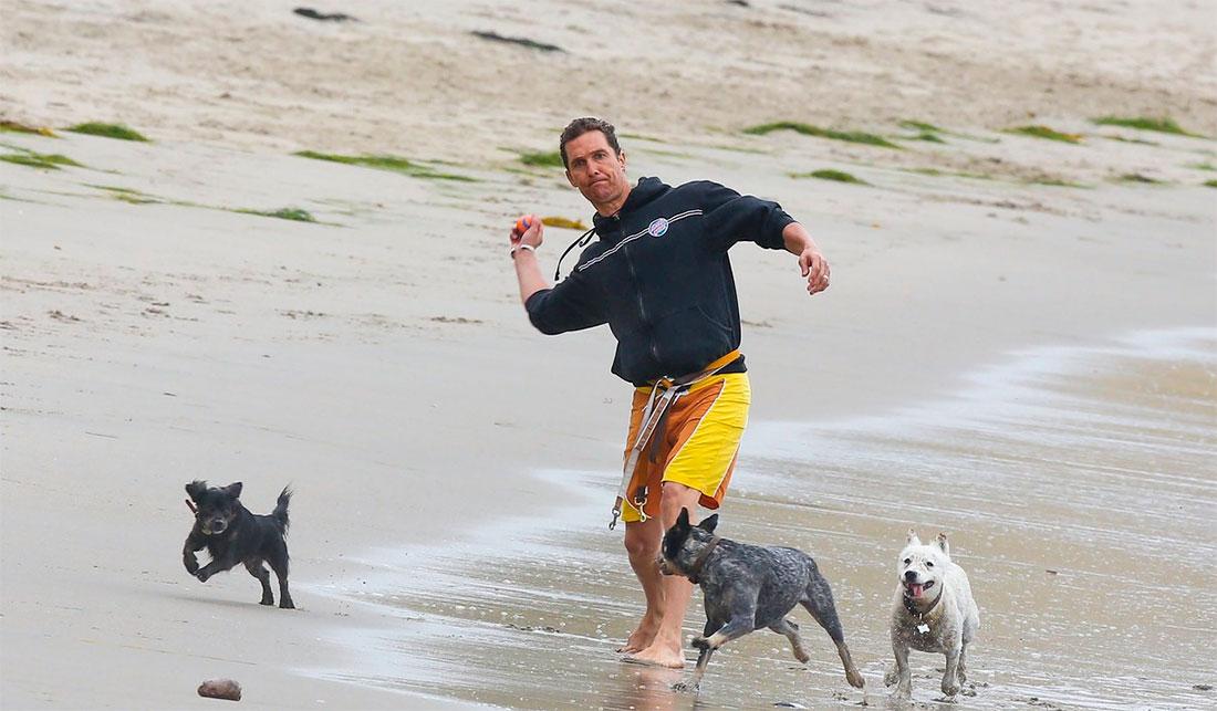 Perros acogidos por famosos: Matthew McConaughey y Foxy
