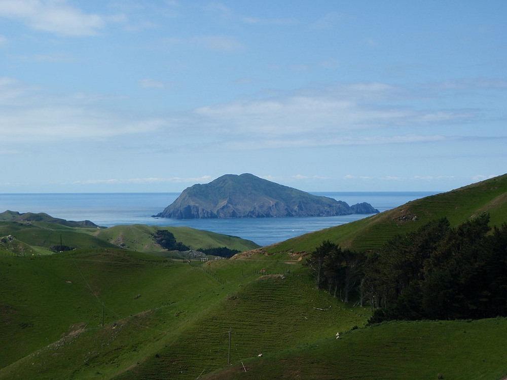 stephens-island