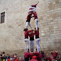 Exhibició Mostra Cultura Catalana 25-04-15 - IMG_9768.JPG