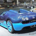 Bugatti Veyron Grand Sport Vitesse (7).jpg