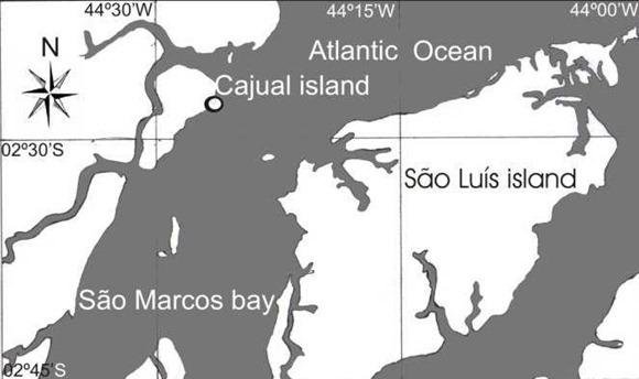 Ilha do Cajual - Maranhao, fonte: Colecionadores de Ossos