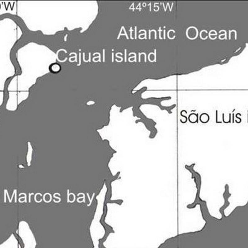 Ilha do Cajual - Maranhão
