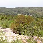 Coast Track view fo Wattamolla (34940)