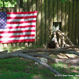 04-07-12 Homosassa Springs State Park - IMGP0057.JPG