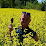 nicklas van eden's profile photo