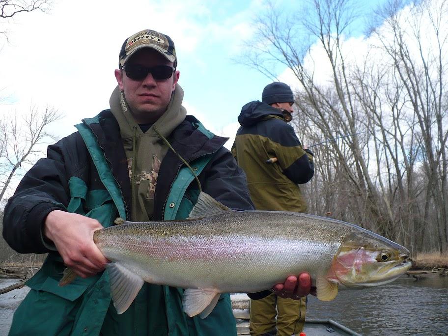 Steelhead Fishing on the Pere Marquette River